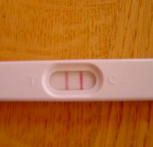 gravidanza