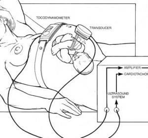 tracciato gravidanza