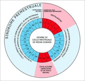 durata ciclo mestruale
