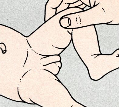 formazione dura sul pene
