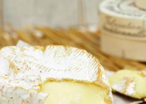 Camembert Gravidanza