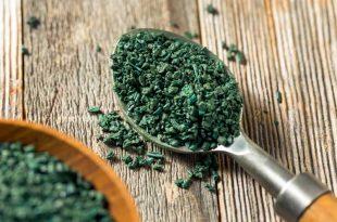 alga spirulina per aumentare la fertilità